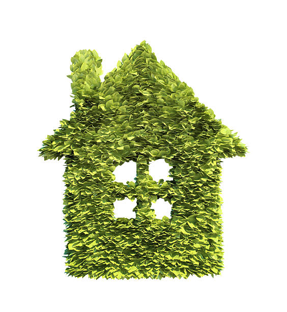 Green home symbol stock photo
