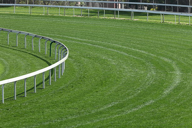 A green horse racing track with railings Turf track in Racecourse. sha tin stock pictures, royalty-free photos & images