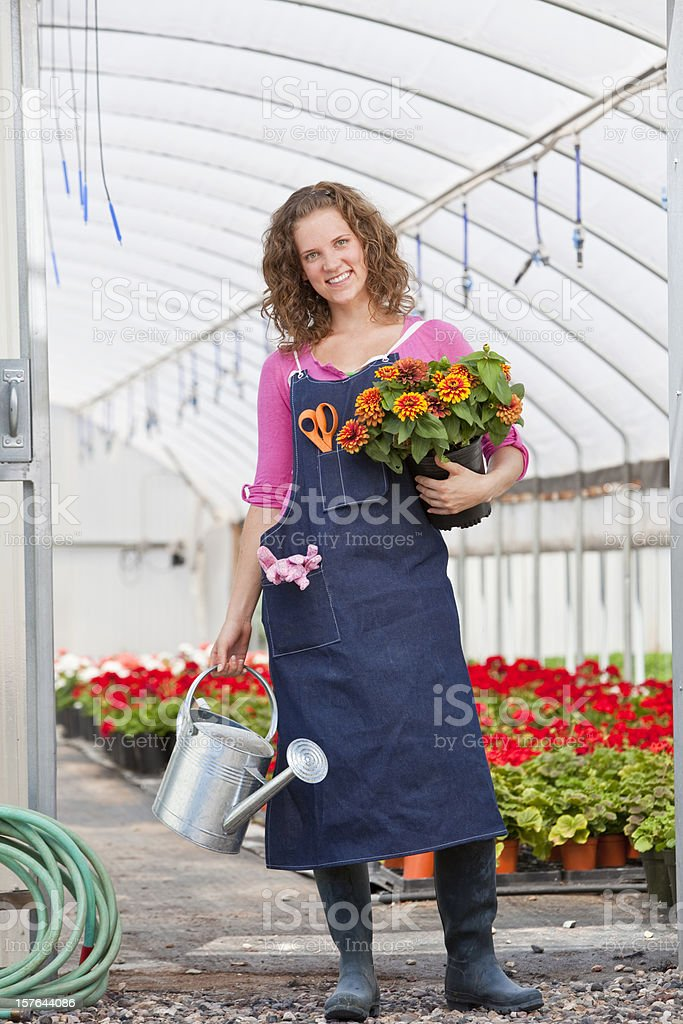 Green house Gardening royalty-free stock photo