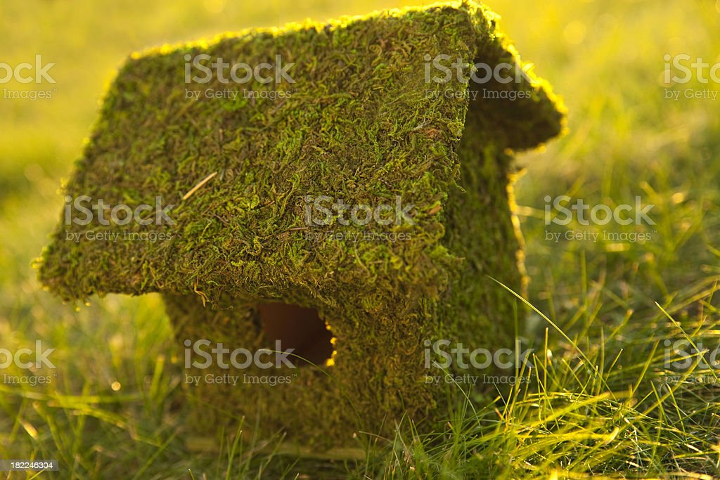 Green House in the Grass royalty-free stock photo