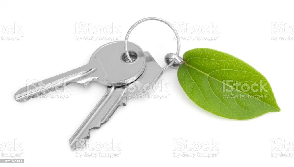 Green House Keys royalty-free stock photo