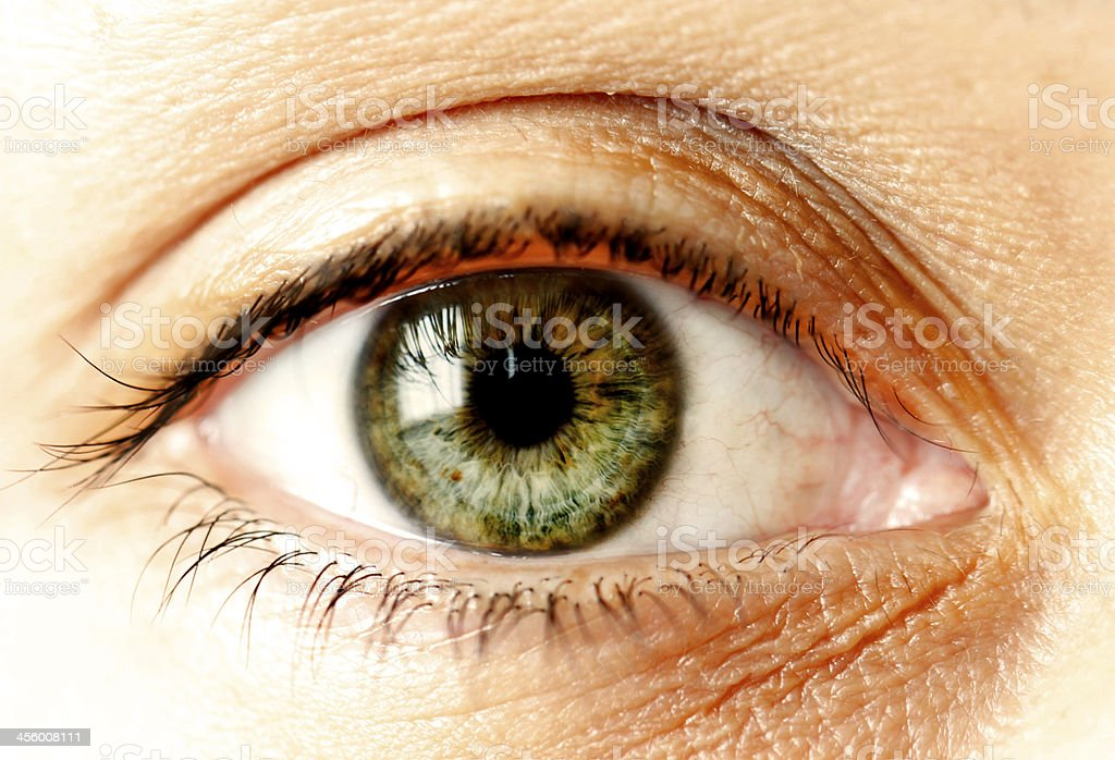 Green Human Eye Close Up stock photo