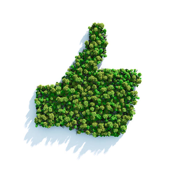 green i like - environmental consciousness stock pictures, royalty-free photos & images