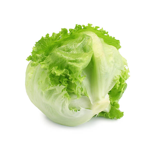 green iceberg lettuce on white background - lettuce stock photos and pictures