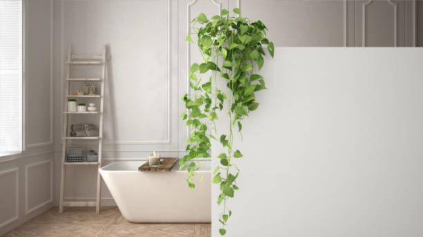Green interior design concept background with copy space, foreground white wall with potted plant, classic bright bathroom stock photo