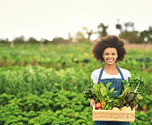 Cropped portrait of an attractive young female farmer carrying a crate of fresh produce