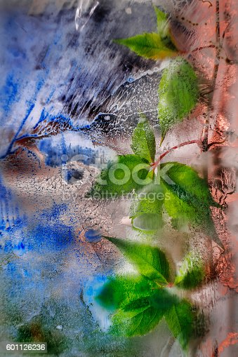 istock Green ivy over old glass with a stains. 601126236