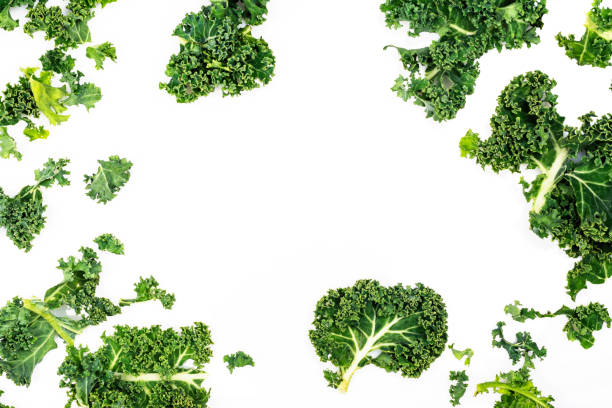 Green kale leaves Green kale leaves on white background. Copy space kale stock pictures, royalty-free photos & images