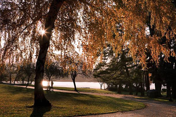 Lac Green en automne du matin - Photo