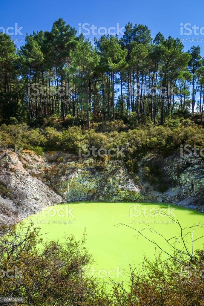 Green lake in Waiotapu, Rotorua, New Zealand stock photo