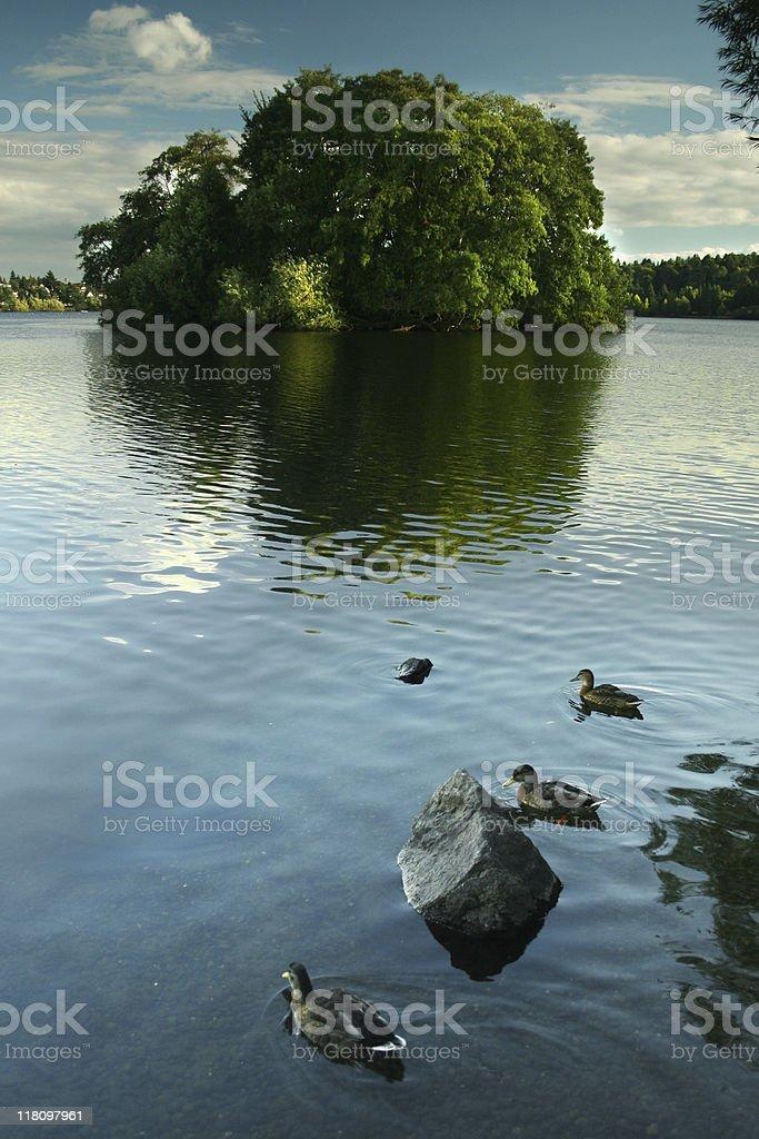 Green Lake, Seattle royalty-free stock photo