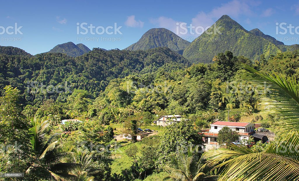 Green landscape from the Island Dominican Republic. stock photo