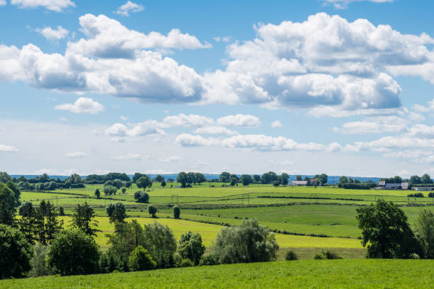 Green landscape, look over meadows blue sunny sky stock photo