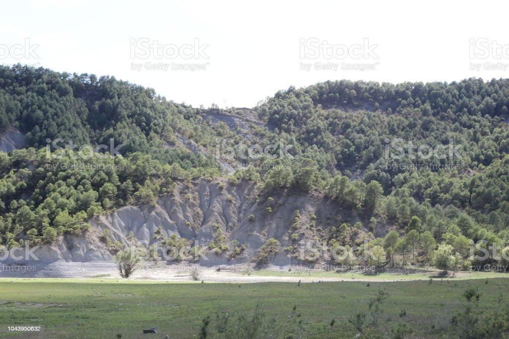 Un verde paisaje del lago artificial Mediano en el Pirineo Aragonés Español visto desde dentro del lago, con pasto verde fresco, cielo azul con nubes y bosque denso en las montañas - foto de stock