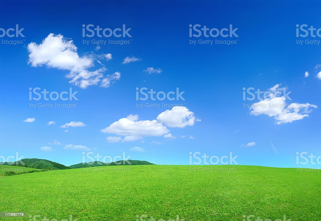 Green Landscape - Royalty-free Agricultural Field Stock Photo