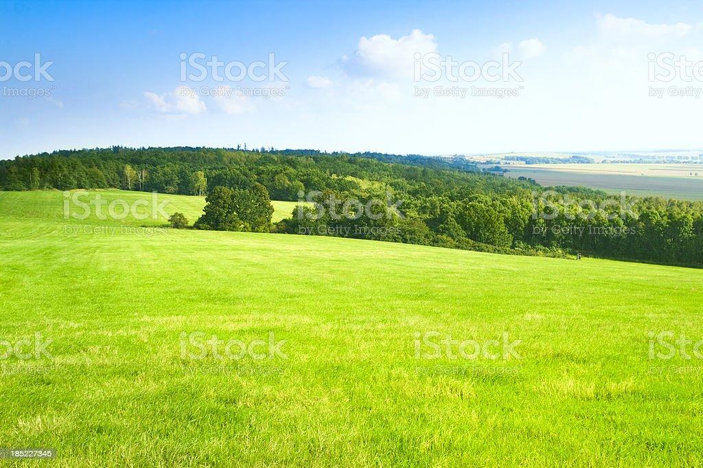 Green landscape royalty-free stock photo