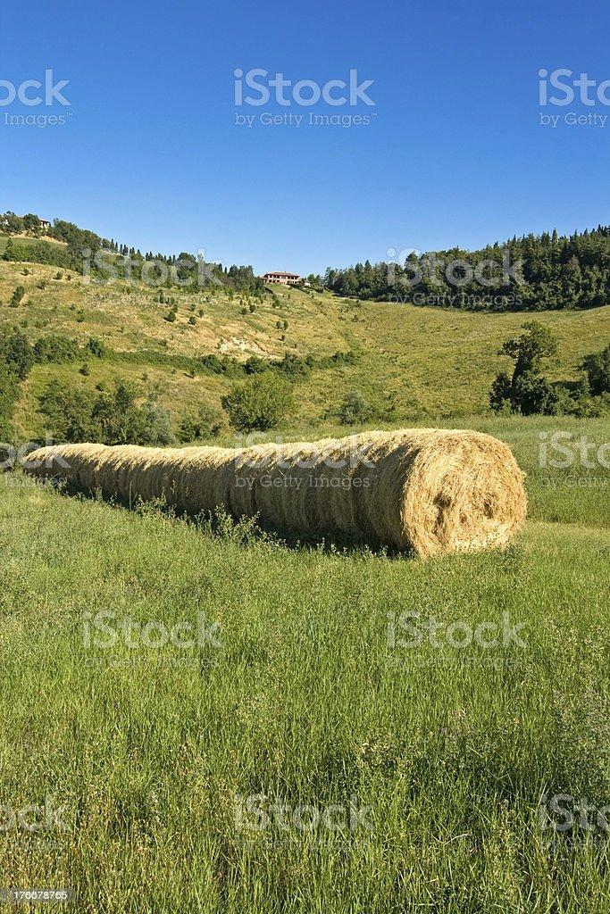 Paisaje verde paisaje foto de stock libre de derechos