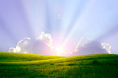 istock Green lawn at hill at sunrise 1294990080