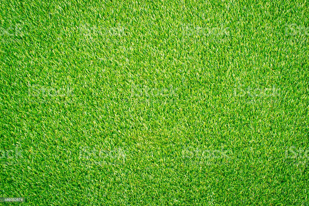 Green lawn for background stock photo