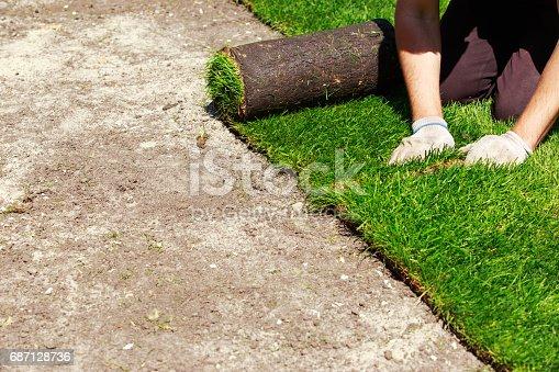 istock Green lawn grass in rolls 687128736
