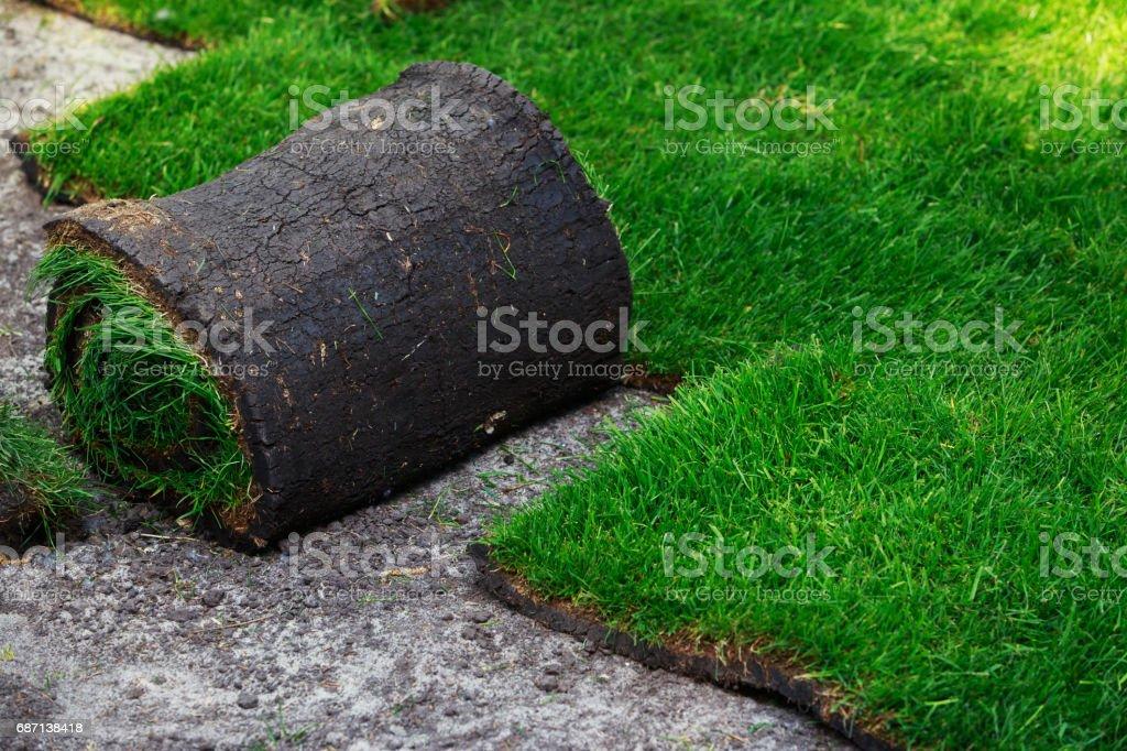 Green lawn grass in rolls stock photo