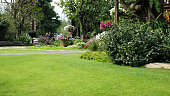 Green lawns and  artificial wood pathways in garden have flowers and trees growing