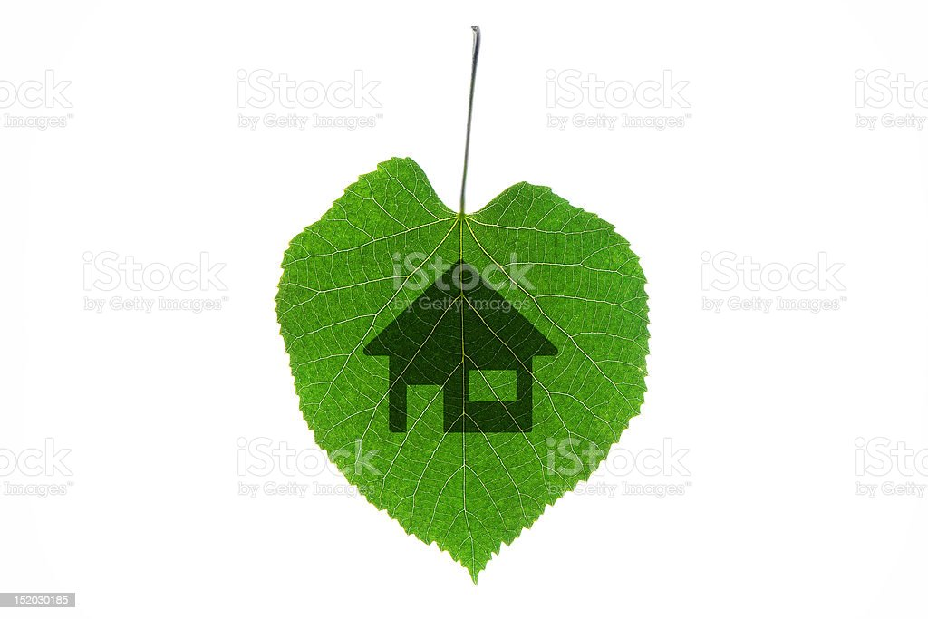 Green leaf home symbol royalty-free stock photo