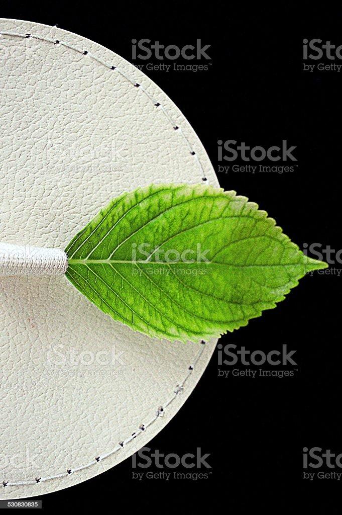 green leaf en caja de sombreros foto de stock libre de derechos