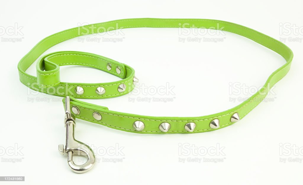 Green Leather Leash royalty-free stock photo