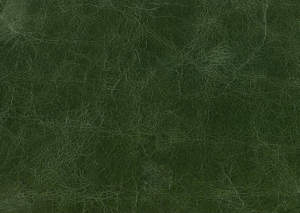 Green Leather Stock Photo Grunge Background With Bleached Distress Texture