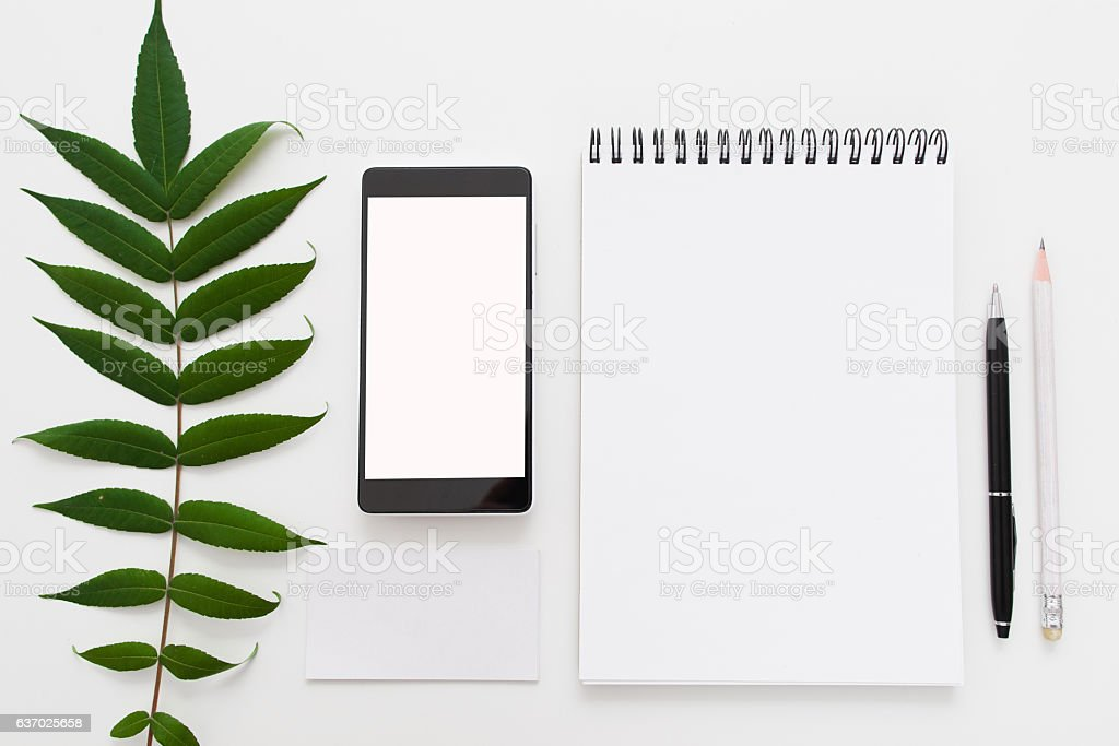 Green leave, blank notepad and smartphone flat lay stock photo