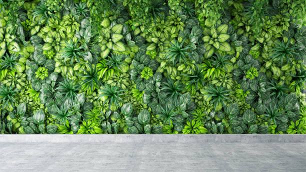 Green Leaves and Plants Wall Background on Gray Concrete Floor stock photo