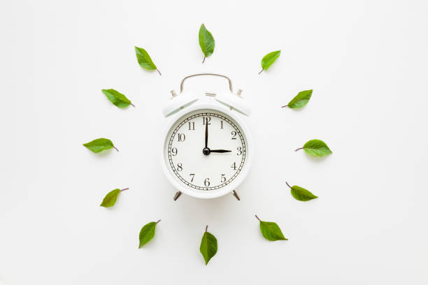 Green leaves around white alarm clock on light table background. Time change concept. Closeup. Top down view. stock photo