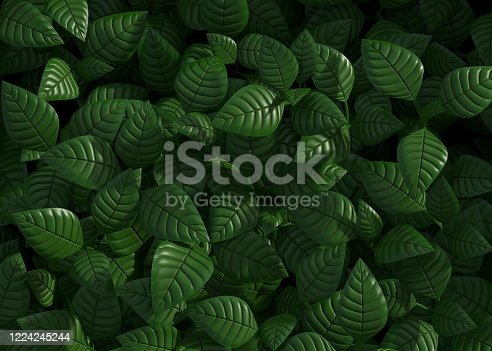green, leaves, pattern, background, 3d, rendering