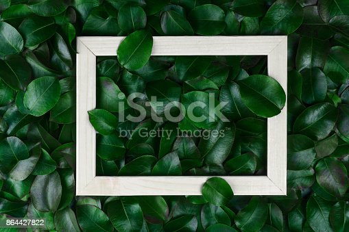 655667160 istock photo green leaves. Creative layout made of leaves with paper card note or frame. A flat lay. Nature concept 864427822