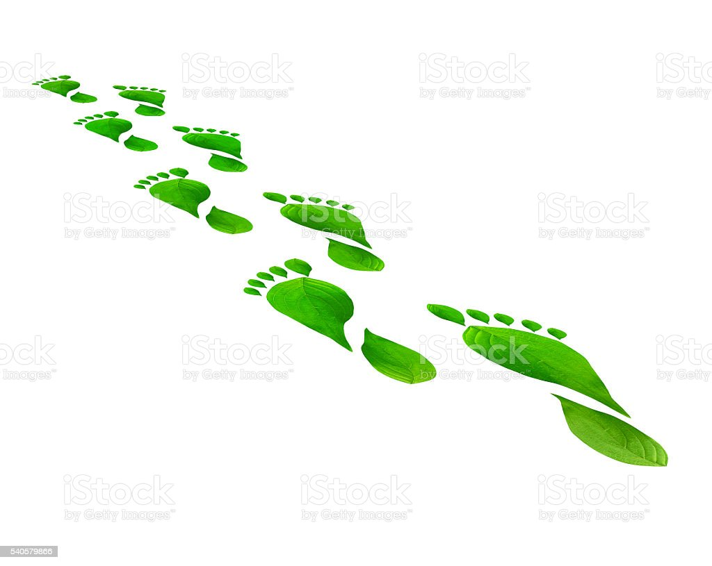 Green leaves foot steps isolated over white background. Environmental concept. stock photo
