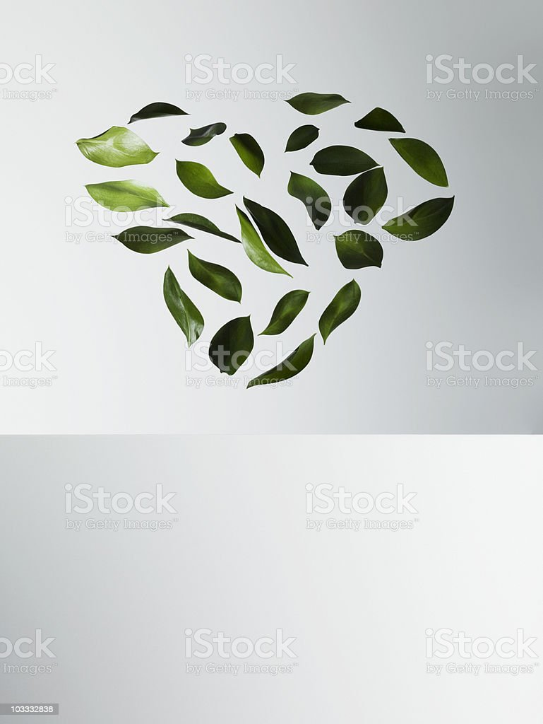 Green leaves forming heart-shape stock photo