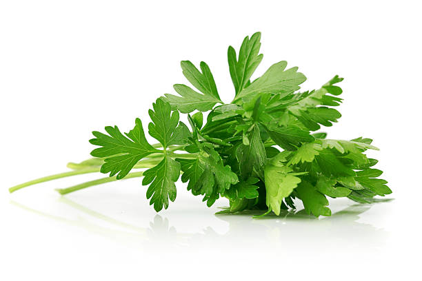 green leaves of parsley - parsley stock photos and pictures