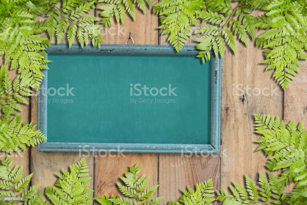 Green Leaves On Old Vintage Wooden Photo Frame On Wooden Wall stock photo