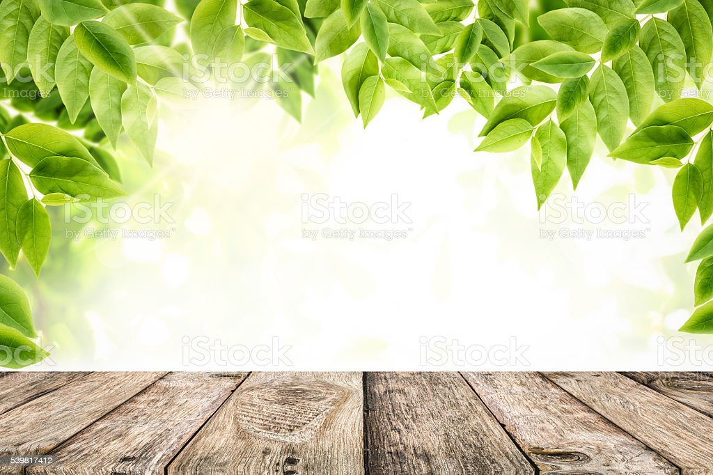 Green Leaves With Empty Wooden Table Top Background stock photo