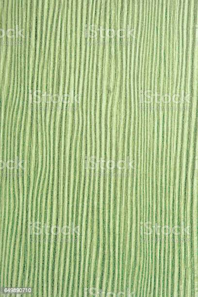 green limba tree, texture old wood, artificial coating