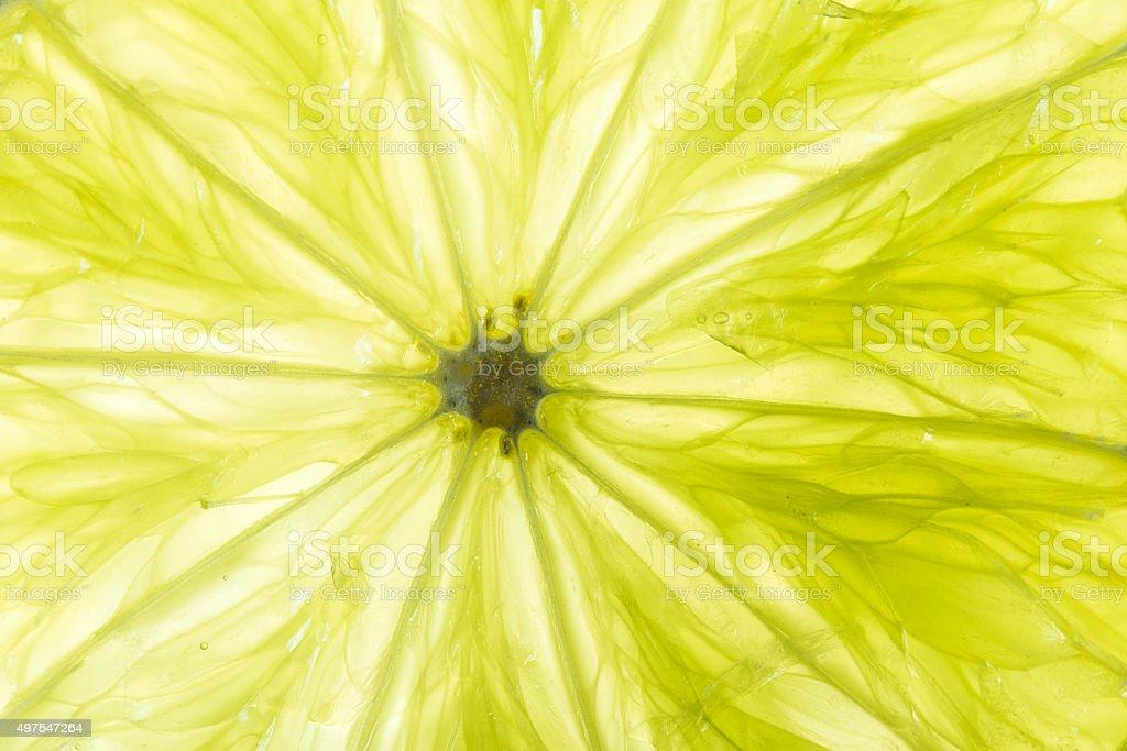 green lime closeup stock photo