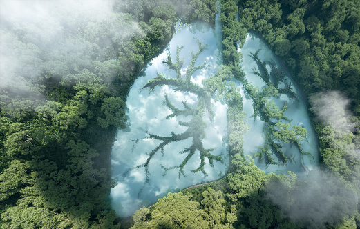 istock Green lungs of planet Earth. 3d rendering of a clean lake in a shape of lungs in the middle of  virgin forest. Concept of nature and rainforest protection, nature breathing and natural co2 reduction. 1185610055