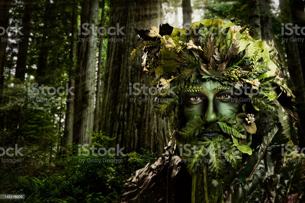 Green man nature character on the forest stock photo