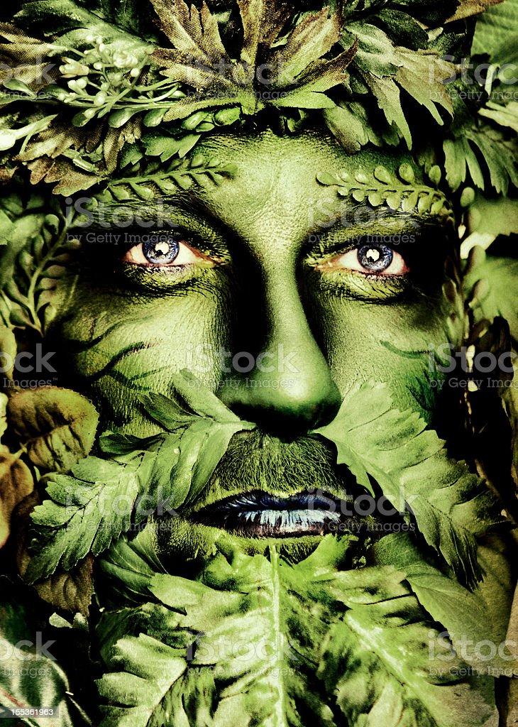 Green Man Series royalty-free stock photo