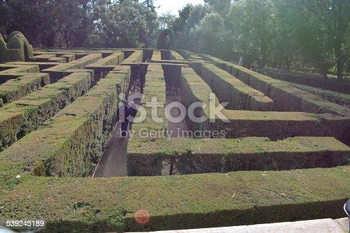 954744070 istock photo Green Maze 539245189