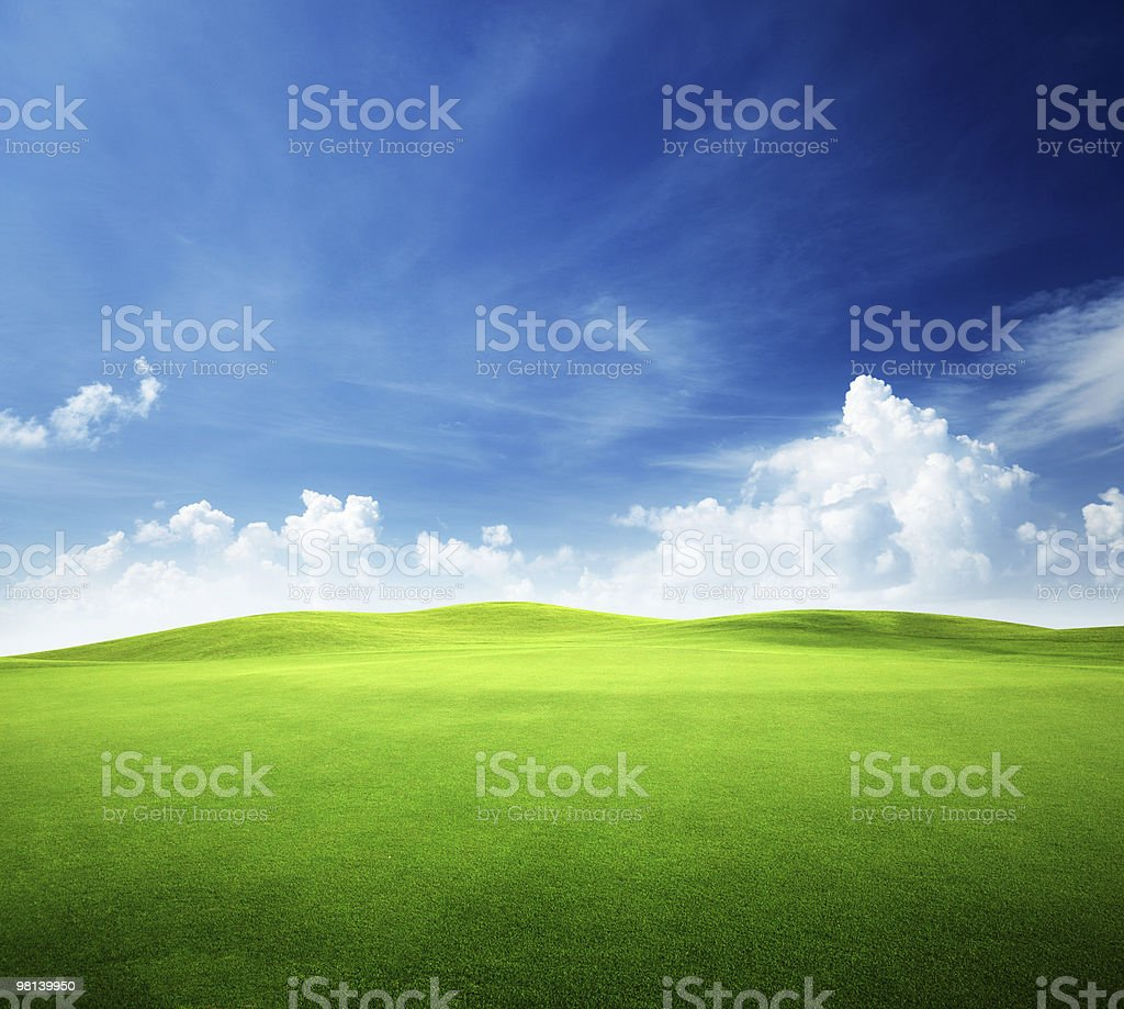Green meadow against blue sky and white clouds royalty-free stock photo