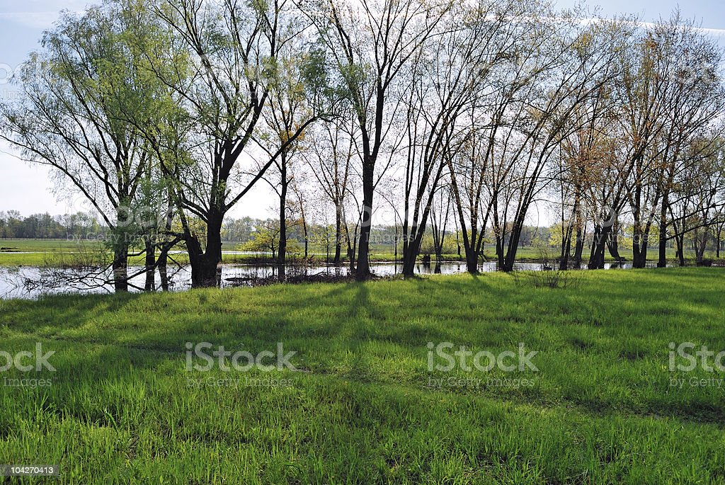 green meadow and river stock photo