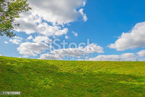Green meadow below a blue sky in sunlight in autumn