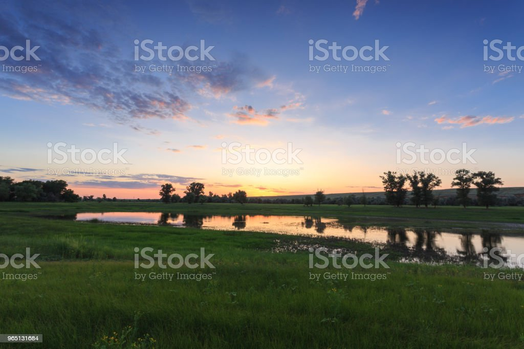 Green meadow flooded with water. In the background, the hill, trees and sunset sky zbiór zdjęć royalty-free